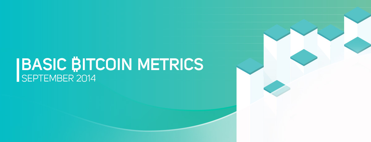 Basic Bitcoin Metrics [Infographic] or Why Bitcoin Rocks This Fall?