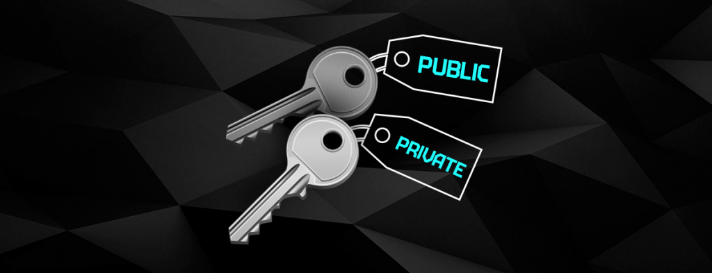 What are Public and Private Keys?