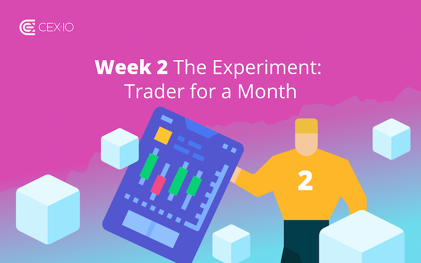 Week 2: The Experiment