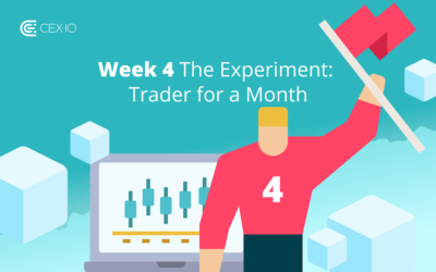 Week 4: The Experiment