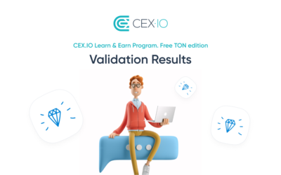 Learn & Earn Free TON Validation Results